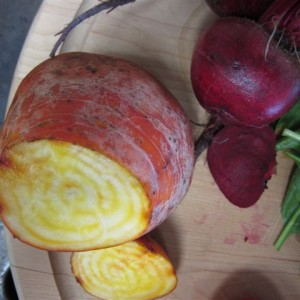Raw yellow and red beets.