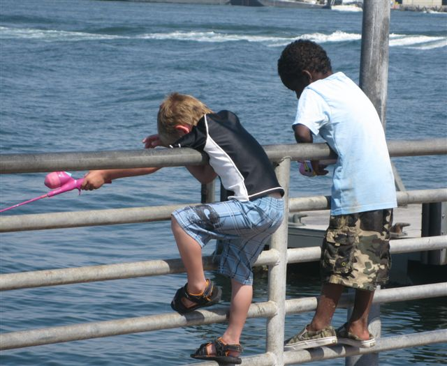 Free family fun for Fishing license san diego
