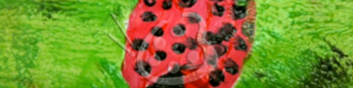 Kids' Art–Ladybug