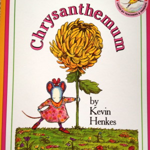 Chrysanthemum is Charming!