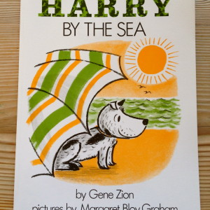 Harry has silly adventures at the beach.