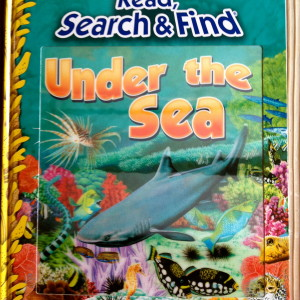 """Sea"" gives nonfiction ocean fun and facts."