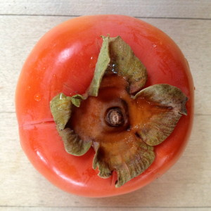 Looking Forward to Persimmons
