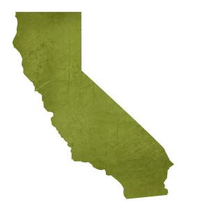 Our State ~ Nuestro estado