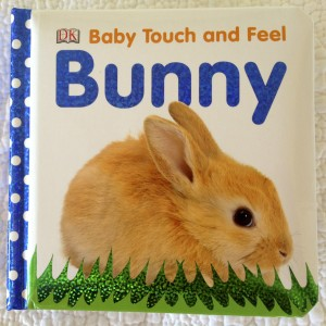 Baby's First Bunny Book