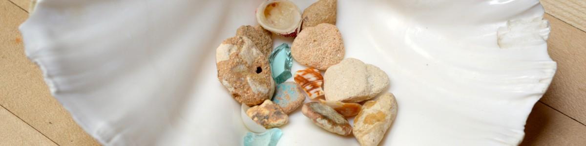 Sea and Shells