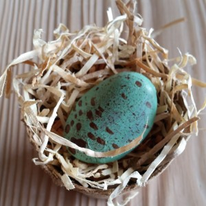 Robin's Egg with Speckles