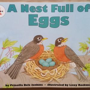 A Nest Full of Eggs