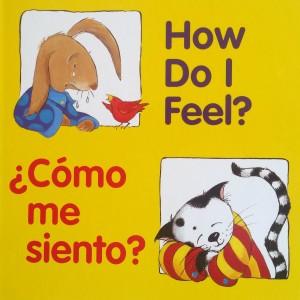 Feelings ~ Sentidos