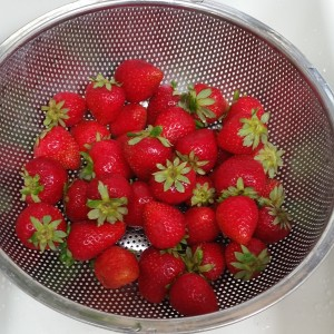 Strawberries ~Fresas