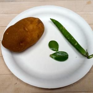 Potato Print 2
