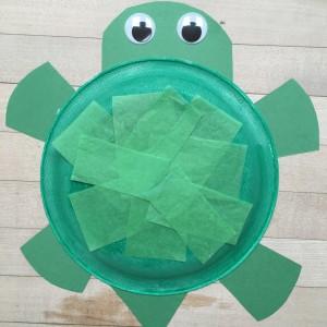 Turtle Art ~ Arte de tortuga