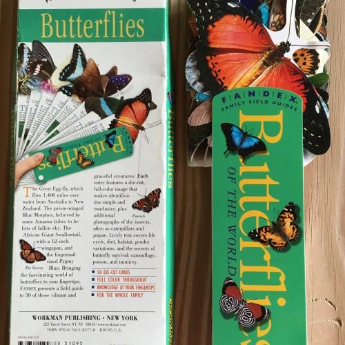 Fandex Butterlies