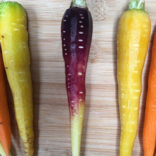 Rainbow Carrots ~ Zanahorias Arco Iris