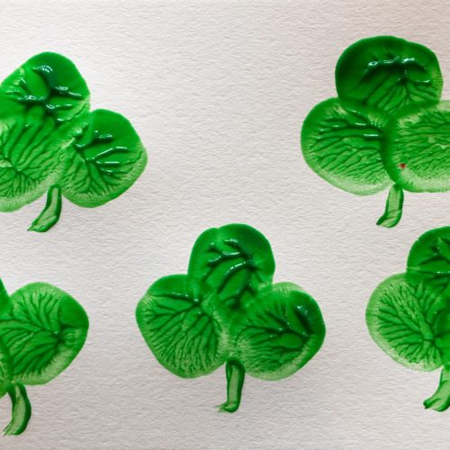 Shamrocks Tréboles