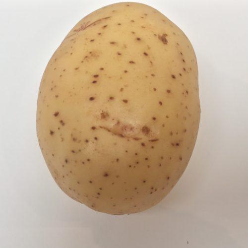 Potato Papa
